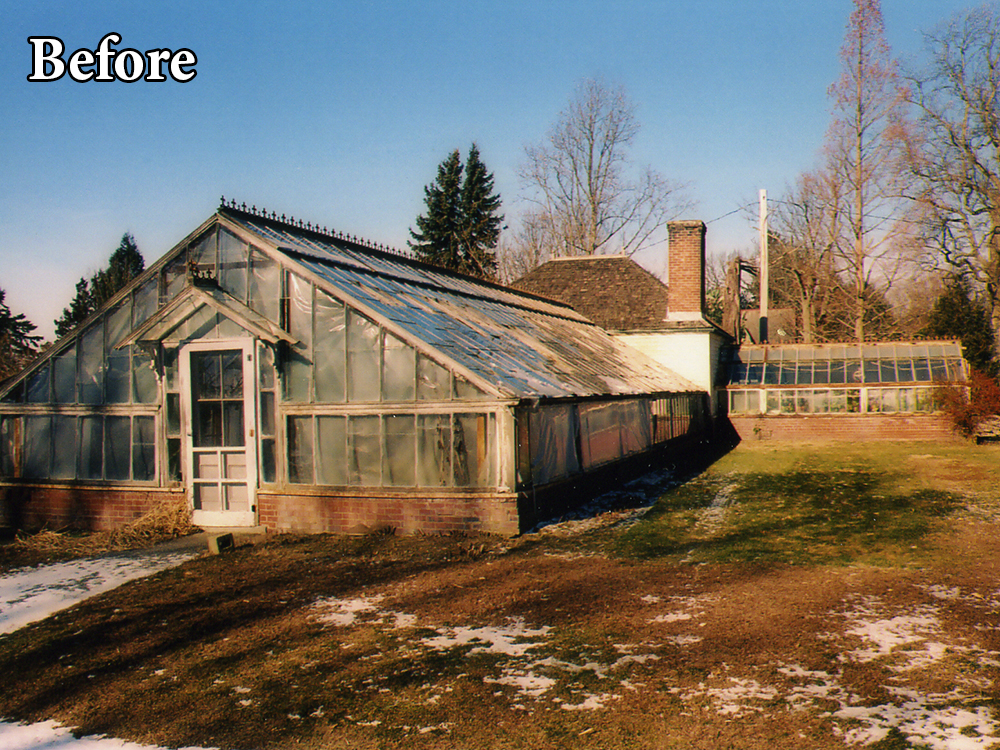Commercial Greenhouse Restoration Before