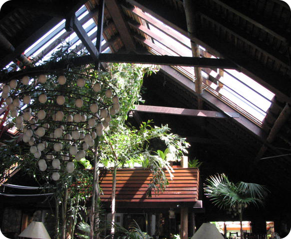 Retractable Roof Interior
