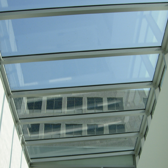 Walkable Skylights