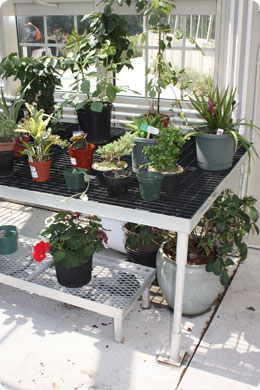 Solar Innovations, Inc. Greenhouse Benches