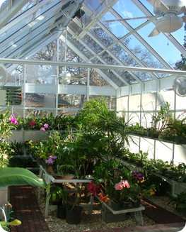 Orchid Greenhouses