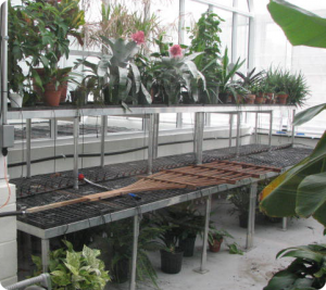 Stacking Greenhouse Benches