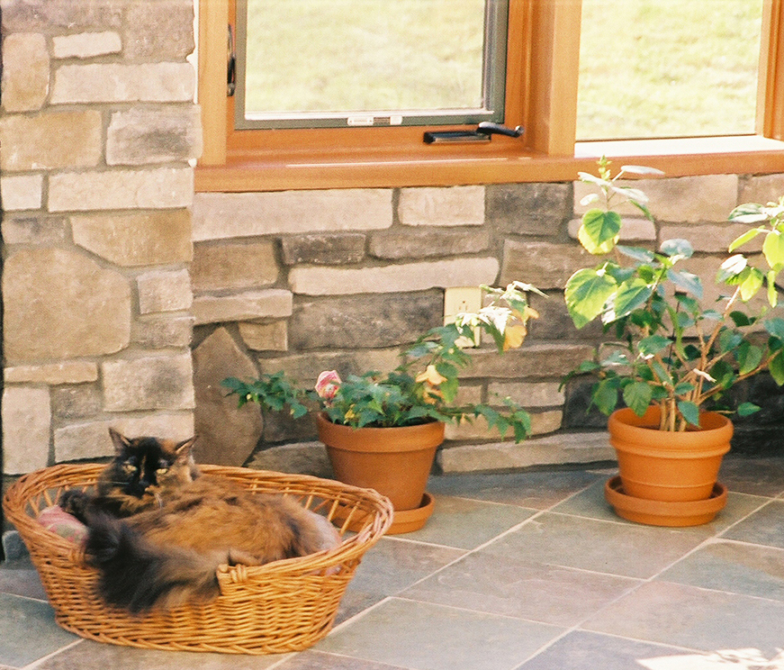 Cat Enjoying Sunroom